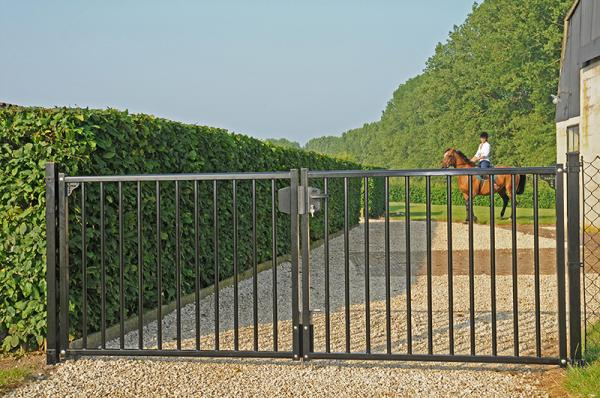 Porte ou portail pivotant en acier